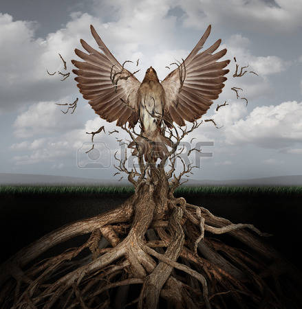 34979264-new-life-breaking-free-as-a-concept-for-freedom-and-power-as-the-rise-of-the-phoenix-to-be-reborn-an.jpg